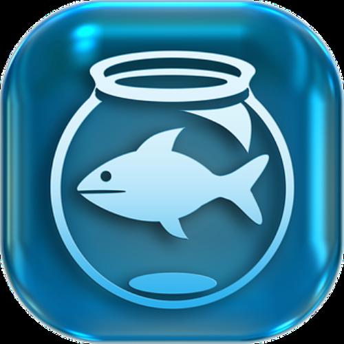 Cinco tips para pescar clientes